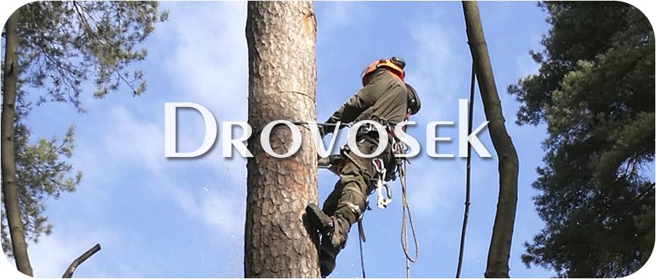 Удаление деревьев в Электрогорске