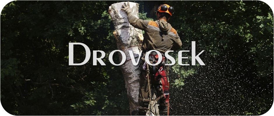 Спил деревьев в Дедовске