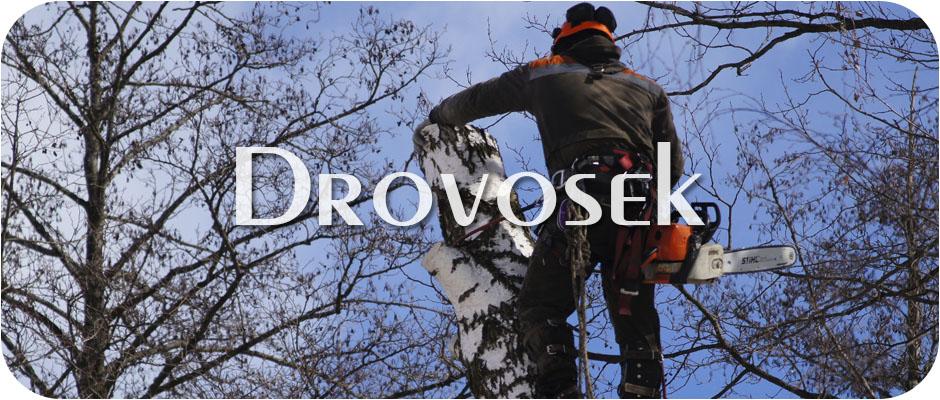 Спил деревьев в Апрелевке