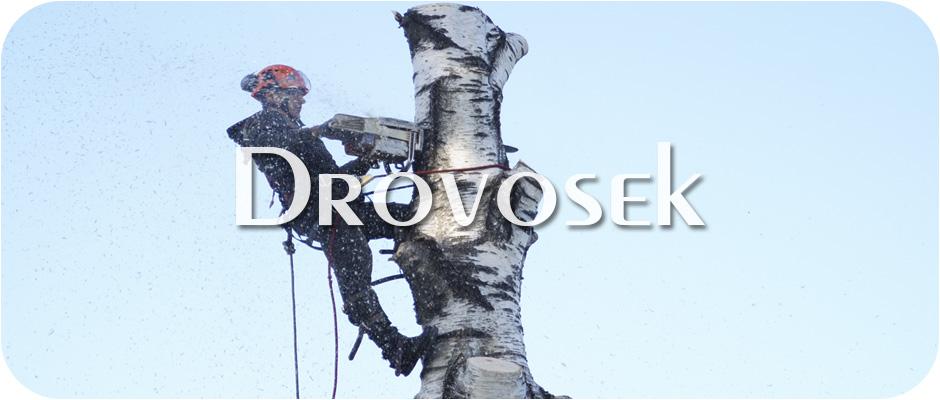 спил деревьев Куровское