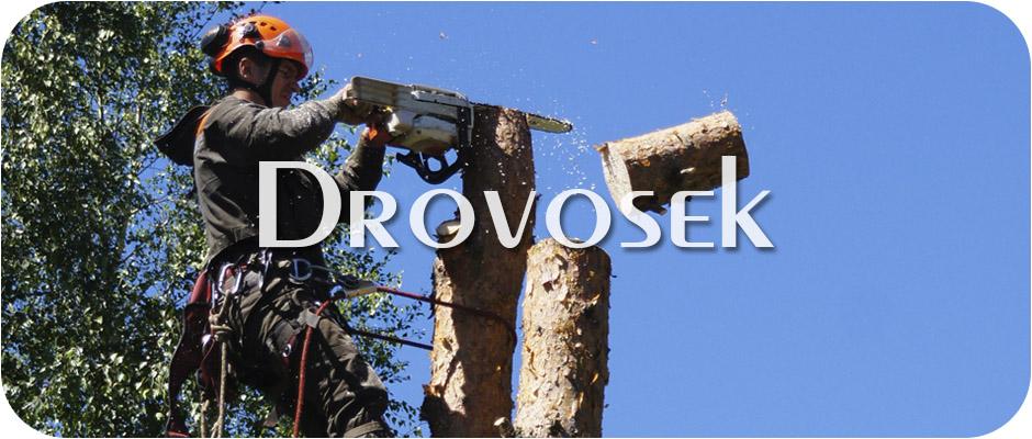 удаление деревьев в Куровское