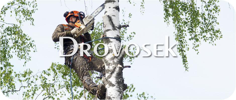 Вырубка деревьев в Быково
