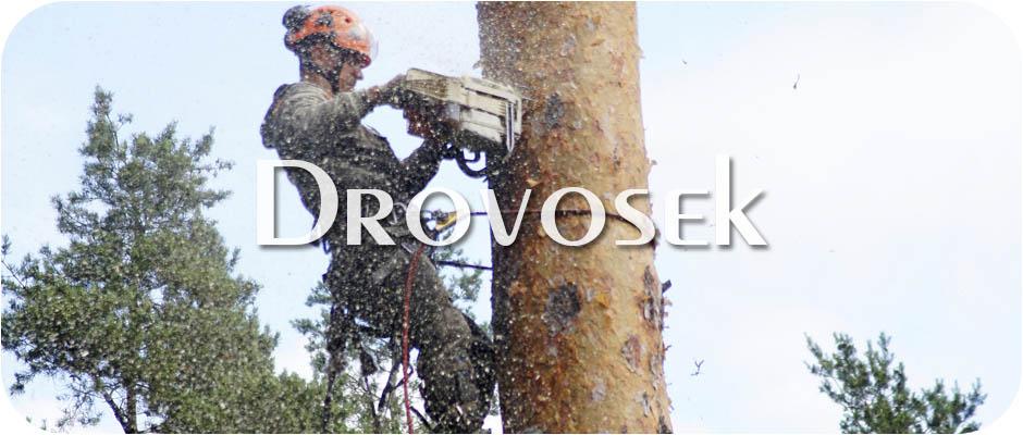 удаление деревьев в Щербинке