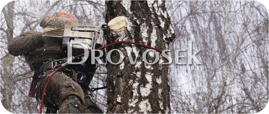 удаление деревьев Софрино