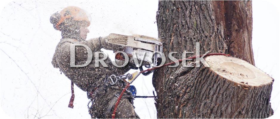 спил деревьев Тучково