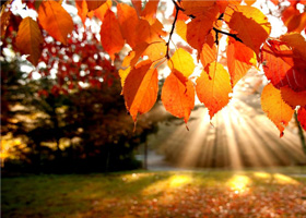 осень скидки