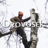 Удаление деревьев Фряново