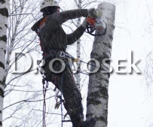 удаление деревьев Селятино