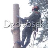 удаление деревьев в Черноголовке