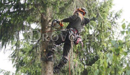 работа с деревьями